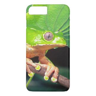 Giant Bicolor Monkey Treefrog, Phyllomedusa iPhone 8 Plus/7 Plus Case