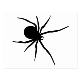 Giant Black Spider Postcard