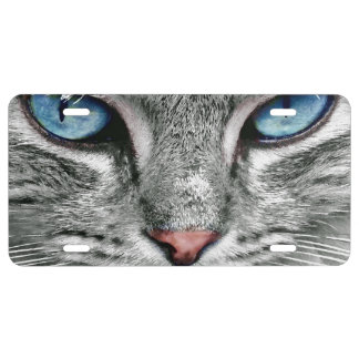 giant blue cat eyes license plate