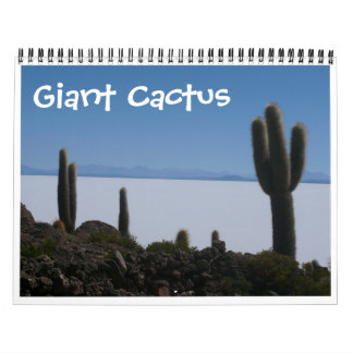 giant cactus calendar