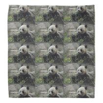 Giant Chinese Panda Bear Bandana