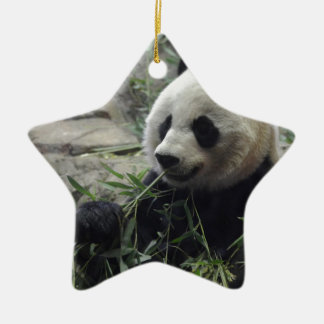 Giant Chinese Panda Bear Double-Sided Star Ceramic Christmas Ornament