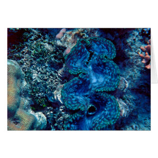 Giant Clam Card