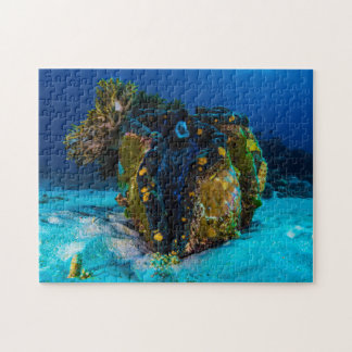 Giant Clam Jigsaw Puzzle
