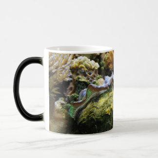 Giant Clam Magic Mug
