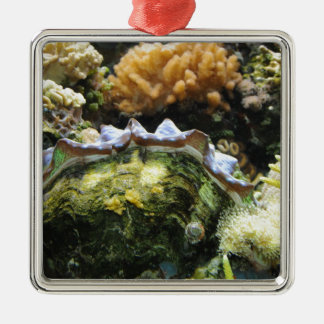 Giant Clam Square Metal Christmas Ornament