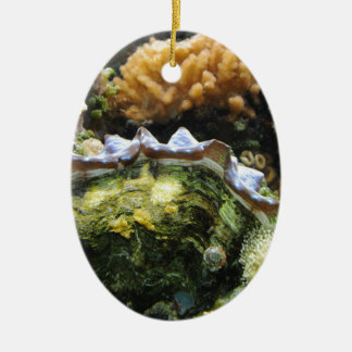 Giant Clam Double-Sided Oval Ceramic Christmas Ornament