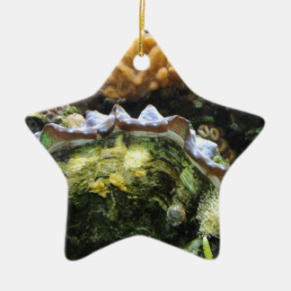 Giant Clam Double-Sided Star Ceramic Christmas Ornament