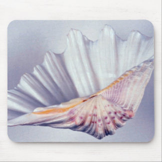giant clam shell for decorative use mousepads
