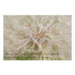 Giant Dandelion - Gone to seed Posters