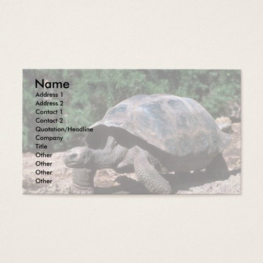 Giant Dome-Shaped Tortoise Walking Business Card