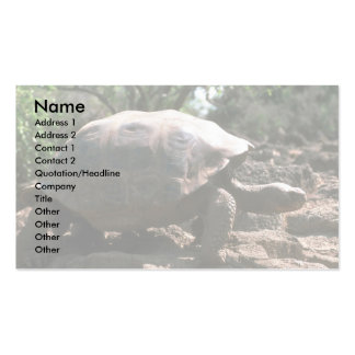 Giant Dome-Shaped Tortoise Walking Double-Sided Standard Business Cards (Pack Of 100)