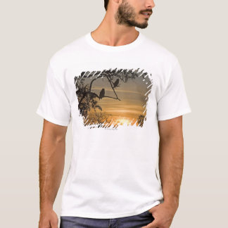 Giant Eagle Owls (Bubo lacteus) silhouetted at T-Shirt