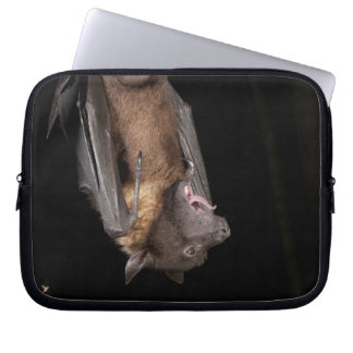 Giant Fruit Bat, Pteropus giganteus, from India Computer Sleeves