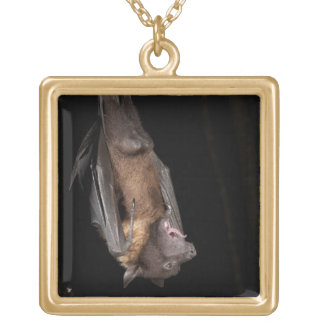 Giant Fruit Bat, Pteropus giganteus, from India Gold Plated Necklace