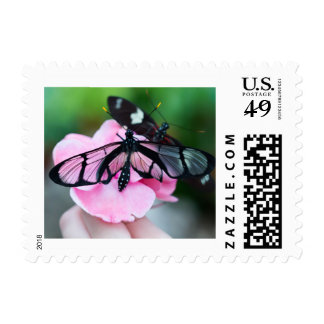 Giant Glasswing Butterfly Postage