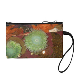 Giant Green Anemone Coin Purse