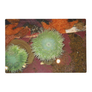 Giant Green Anemone Placemat