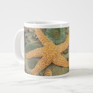 Giant green anemones and ochre sea stars giant coffee mug