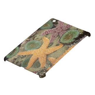 Giant green anemones and ochre sea stars iPad mini cover