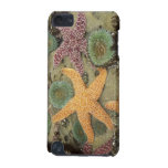 Giant green anemones and ochre sea stars iPod touch 5G case