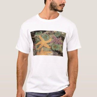 Giant green anemones and ochre sea stars T-Shirt