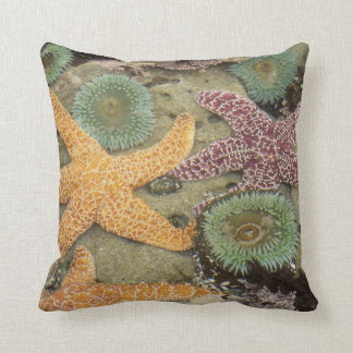 Giant green anemones and ochre sea stars throw pillow