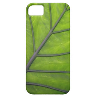 Giant Green Leaf iPhone 5 Case Cover