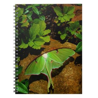 Giant Green Luna moth Spiral Notebook