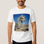 Giant griffin, Persian, c.516-465 BC T Shirt