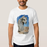 Giant griffin, Persian, c.516-465 BC Tee Shirt