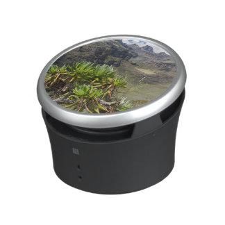 Giant Groundsel Or Dendrosenecio Bluetooth Speaker