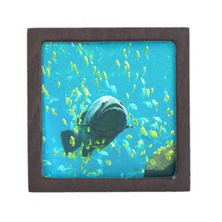 Giant Grouper freedom peace and calm Premium Jewelry Boxes