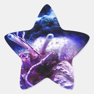 Giant Hermit Crab Star Stickers