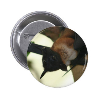 Giant Indian Fruit Bat Pinback Button