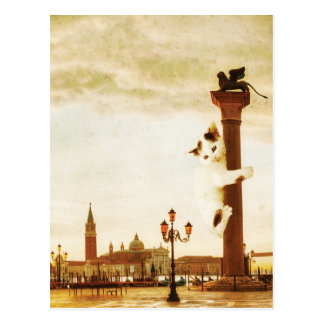 Giant Kitten in Venice Postcard