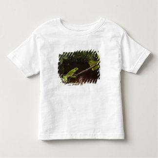 Giant leaf frog Phyllomedusa bicolor) 2 Toddler T-shirt