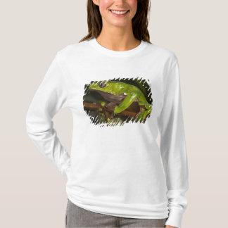Giant leaf frog Phyllomedusa bicolor) 3 T-Shirt