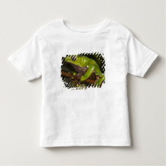 Giant leaf frog Phyllomedusa bicolor) 3 Toddler T-shirt