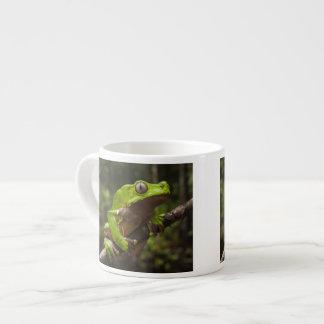 Giant leaf frog Phyllomedusa bicolor) Espresso Cup