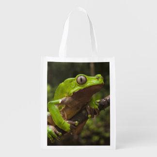 Giant leaf frog Phyllomedusa bicolor) Grocery Bag