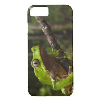 Giant leaf frog Phyllomedusa bicolor) iPhone 7 Case