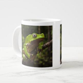 Giant leaf frog Phyllomedusa bicolor) Large Coffee Mug