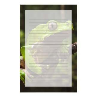 Giant leaf frog Phyllomedusa bicolor) Stationery