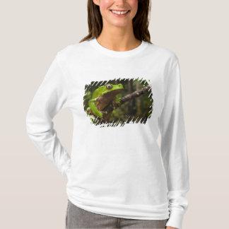 Giant leaf frog Phyllomedusa bicolor) T-Shirt