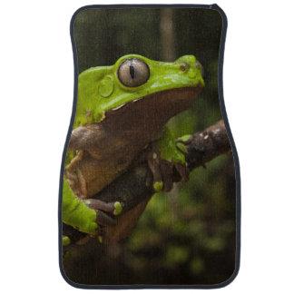 Giant leaf frog Phyllomedusa bicolor) Car Mat