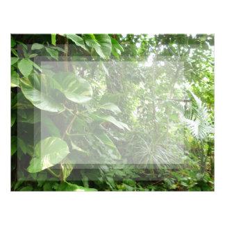 Giant Leaves Jungle View Plant Photograph Letterhead