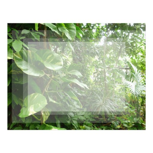 Giant Leaves Jungle View Plant Photograph Letterhead Template