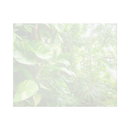 Giant Leaves Wash Out Jungle View Canvas Print