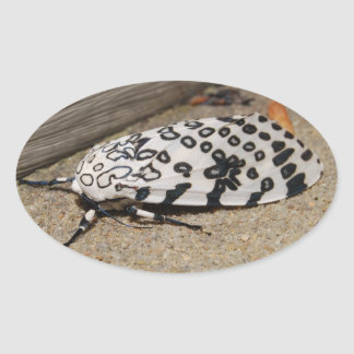 Giant Leopard Moth Oval Sticker